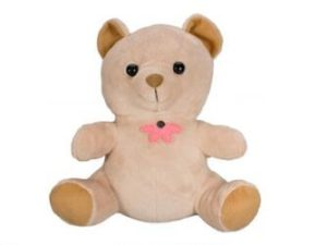 WIFI Teddy Bear Hidden Camera