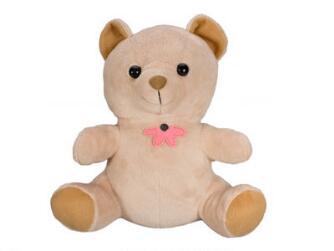 WIFI Teddy Bear & Hidden Camera