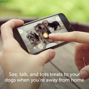 furbo-dog-camera-and-treat-dispenser
