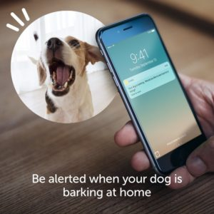 furbo-dog-camera-and-treat-dispenser