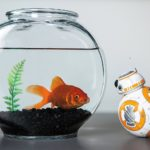 Sphero Sphero Star Wars BB-8 Droid - cool gadgets for Christmas