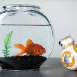 Sphero Sphero Star Wars BB-8 Droid - cool gadgets for Christmas