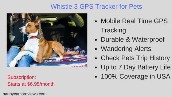 Whistle 3 GPS Tracker for Pets