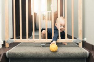 Baby Gates and Pet doors