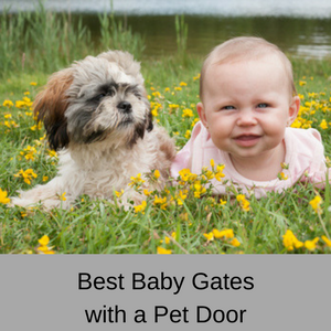 Best Baby Gates with a Pet Door