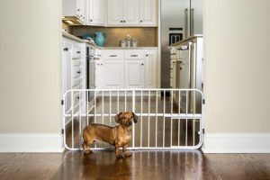 Carlson Lil' Tuffy Expandable Baby Gate with Pet Door